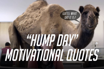 """Hump Day"" Motivational Quotes"